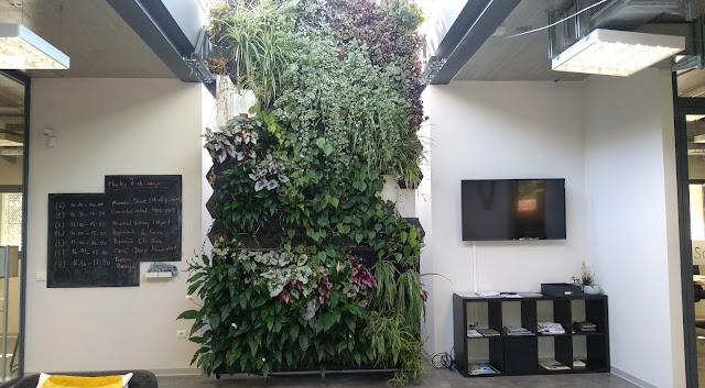 Curso jardin vertical