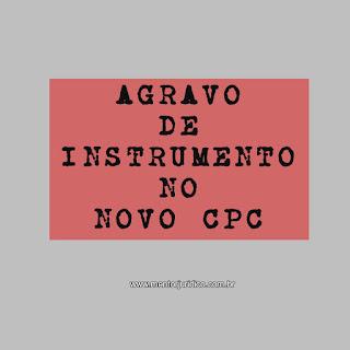 RECURSO DE AGRAVO NO NOVO CÓDIGO DE PROCESSO CIVIL