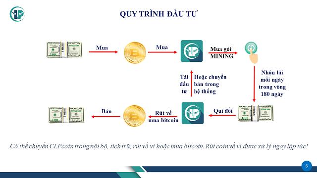 Quy trình Đầu tư dự án dự án CLP coin