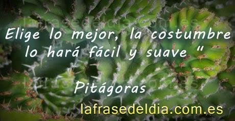 Grandes citas de Pitágoras