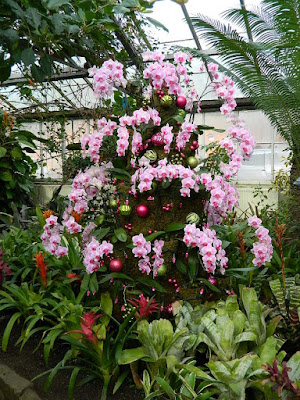 2018 Allan Gardens Conservatory Winter Flower Show pink Phalaenopsis topiary by garden muses--not another Toronto gardening blog