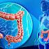 Nutriţionistul american Norman Walker: Fiecare celulă a corpului e afectată de sănătatea colonului. Constipația, cauza tuturor nenorocirilor!
