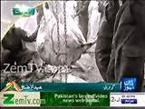 Man Slaughter His Cow Into Well On Eid Ul Adha in Gujranwala