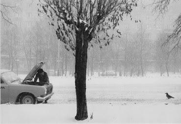 Photo d'un homme affairé sur le moteur de sa voiture et observé par un oiseau par Pentti Sammallahti