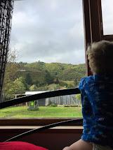 In Wellington Zealand - Adventures Of