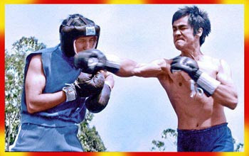 How Does Jeet Kune Do Compare to Mixed Martial Arts