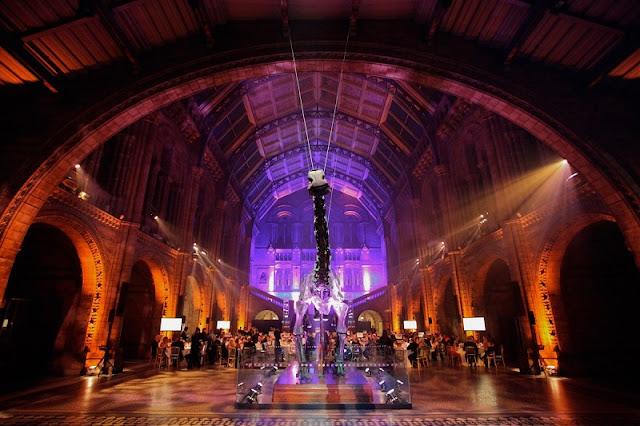 Visitar  museus à noite em Londres