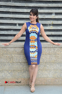 Actress Anchor Manjusha Pictures in Blue Short Dress at Jaguar Movie Success Meet  0149
