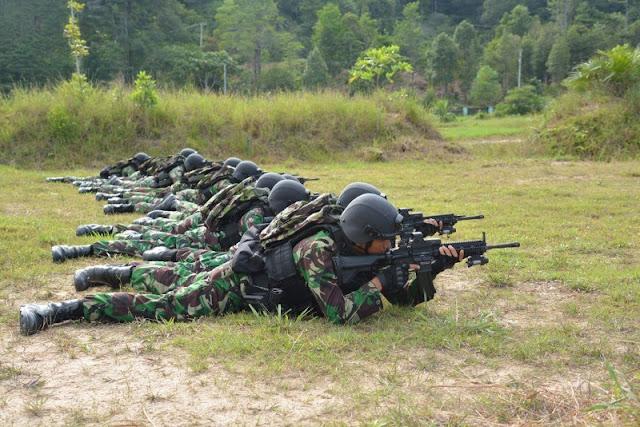 Mengenal Kemampuan Inti Pasukan Pemukul Reaksi Cepat TNI.jpg