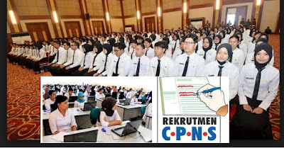 Image result for CPNS TAHUN 2017