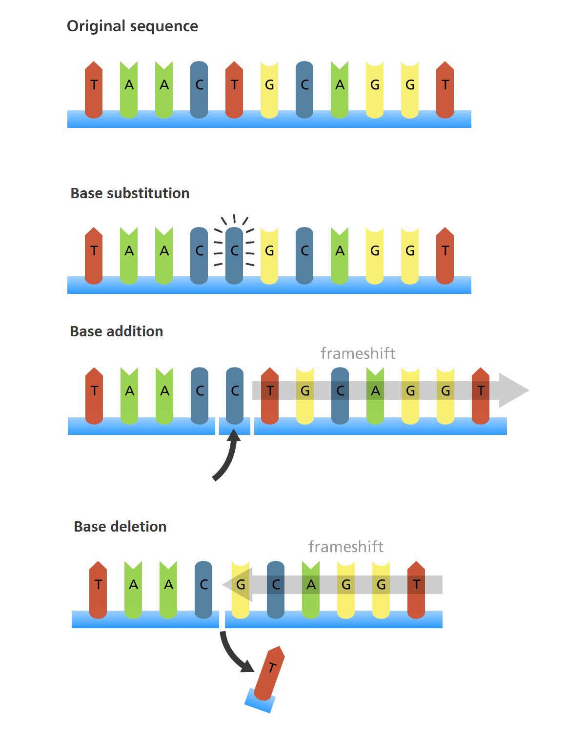 133 Genetic Mutations