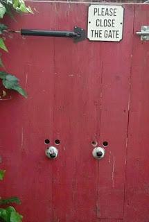 Foto de um portão de tábuas verticais pintadas em vermelho. Ao centro, abaixo, dois focinhos de cachorro, lado a lado,  encaixados, cada um em um buraco redondo. Acima de cada focinho, dois buracos menores redondos, por onde mal enxerga-se o brilho de pares de olhos mirando. No topo, entre as engrenagens de ferro do puxador e da tranca, uma placa quadrada em fundo branco, onde em letras maiúsculas pretas lê-se: Please, close the gate. Na lateral esquerda, alguns ramos das folhagens com folhas largas.