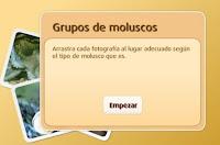 http://www.primaria.librosvivos.net/archivosCMS/3/3/16/usuarios/103294/9/5EP_Cono_cas_ud3_216/frame_prim.swf