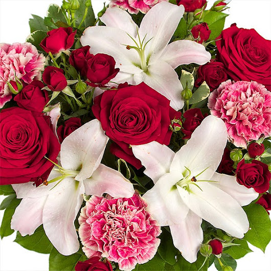 Valentines Day Flowers Gifts l Valentines Day Flowers Gifts Online