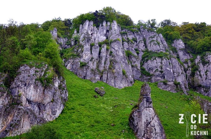 gora koronna, ojcow, ojcowski park narodowy, pstrag potokowy, pstrag wedzony, blog, zycie od kuchni