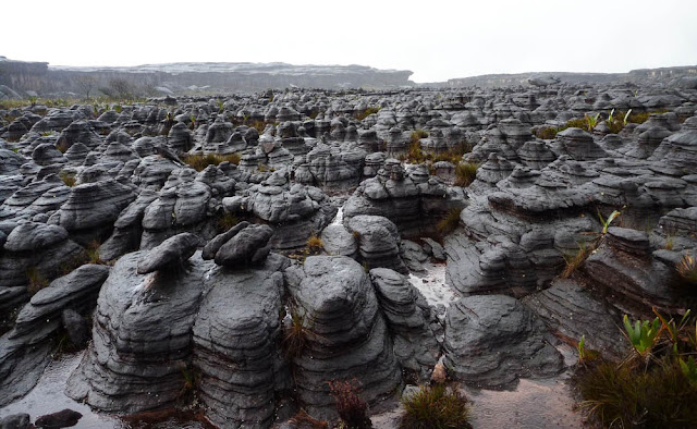 Formações no topo do Monte Roraima