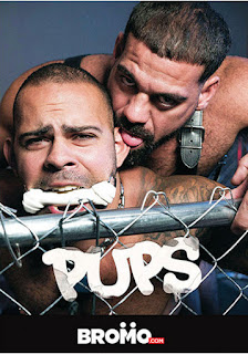 http://www.adonisent.com/store/store.php/products/pups-