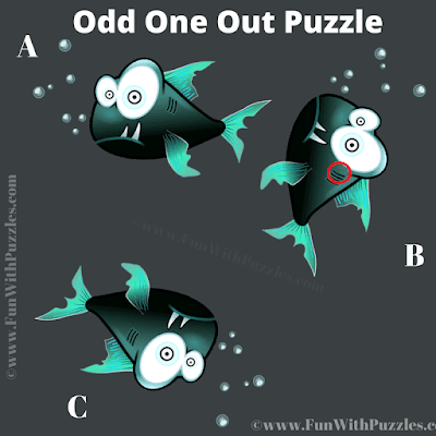 Answer of Spot The Different Fish Picture Riddle for Teens