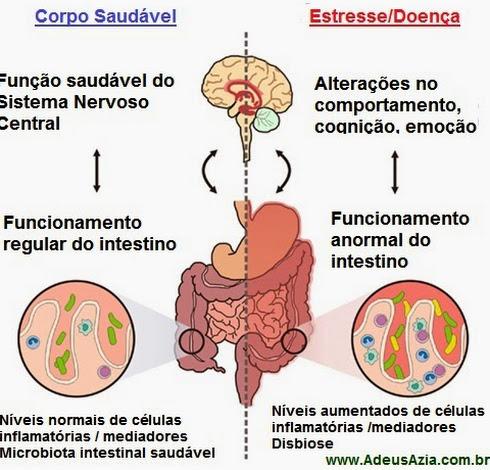 fisiologia gastrointestinal lange descargar google