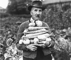 Old school gardener