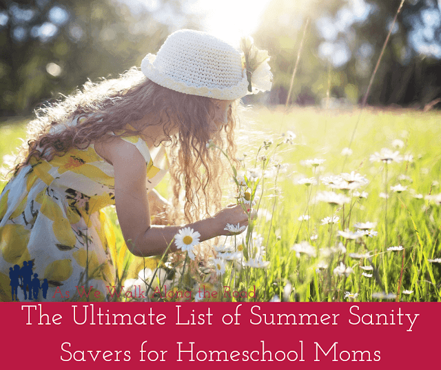 Summer fun ideas for homeschool moms