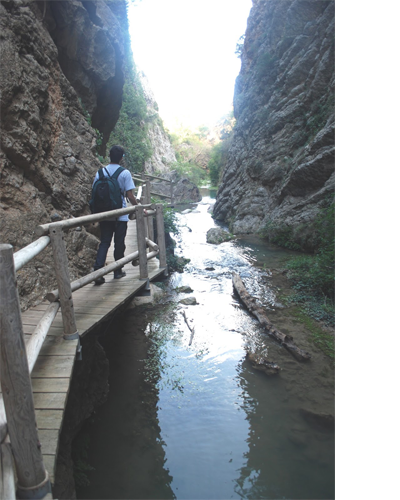 Novedades sobre los últimos estudios y descubrimientos del P. C. del Río Martín