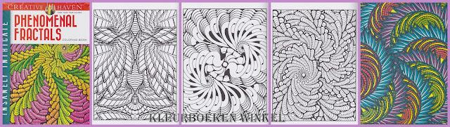 kleurboek phenomenal fractals