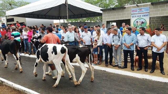 Torneios da 36º Expo Bacia Leiteira mostra diferencial da genética  produzida em Alagoas
