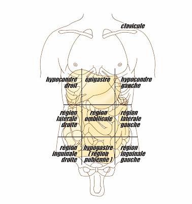 abdominales douleurs localisation région infirmier