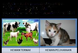 570 Koleksi Gambar Montase Hewan Dan Tumbuhan HD Terbaru