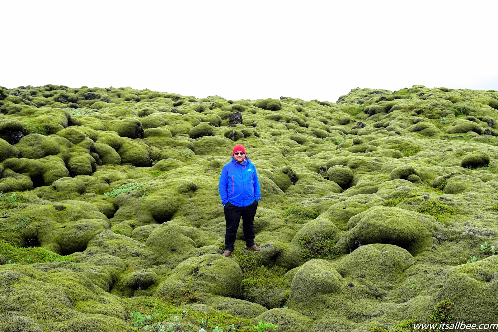 Enter The Magical World of Iceland's Eldhraun Lava Field