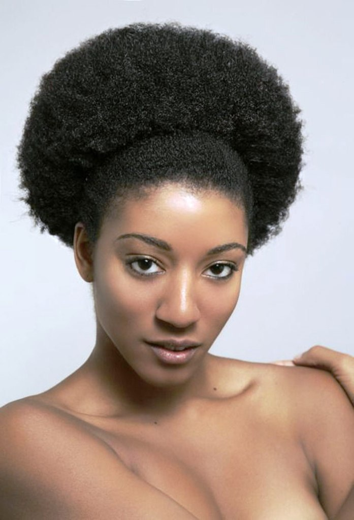 9 Beautiful Afro Hairstyles For Natural Hair  Black White Nation