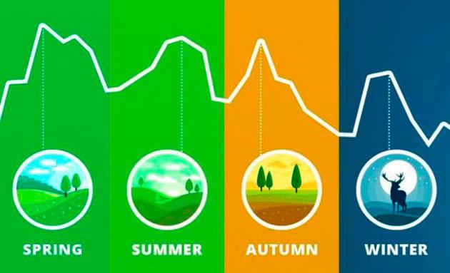 правильная оценка сезонности в хайп-проектах