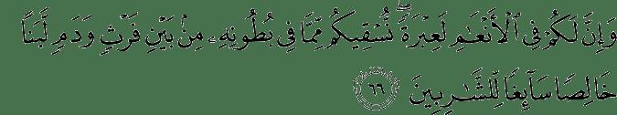 Surat An Nahl Ayat 66