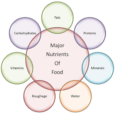 Which three components of a balanced diet supply us with energy?