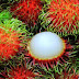 There's a lot of benefits when you eat Rambutans!