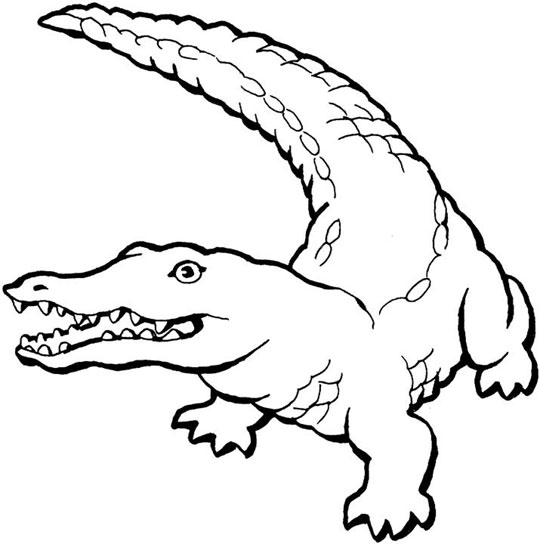 printable coloring pages crocodile - photo #6