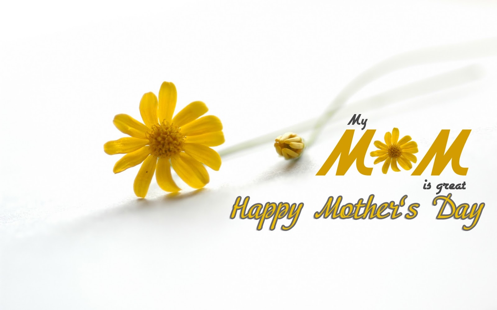 Punjabi Mother Day Sms | Urdu Real Mother Day Sms | Real