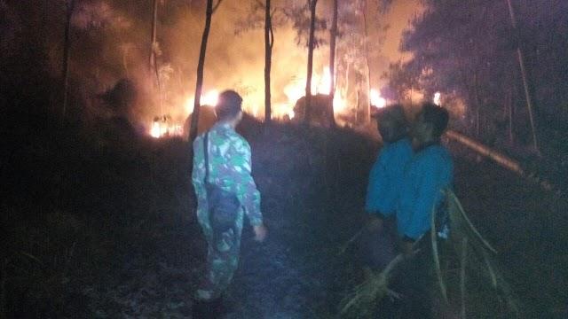 Lahan Gunung Ciremai Kebakaran, TNI Segera Bantu Padamkan