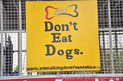 AKF's Campaign against dog eaters and traders - Don't Eat Dogs - Philippine Dog Festival 2014 - December 12, 2014