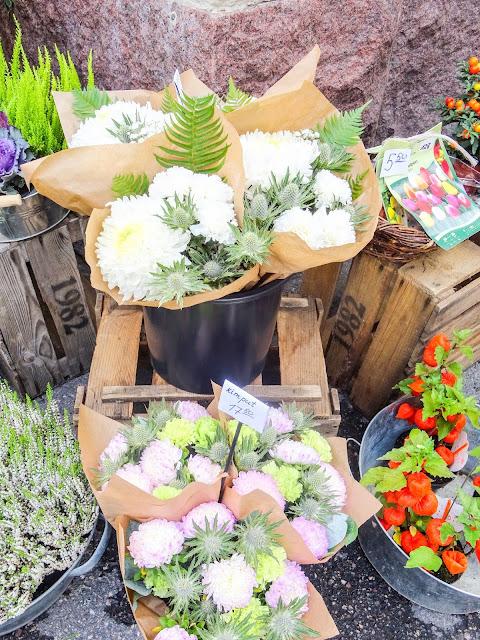 big mamas home, Helsinki, Viikkokatsaus, kukkia, kukkakauppa, kivijalkakauppa,