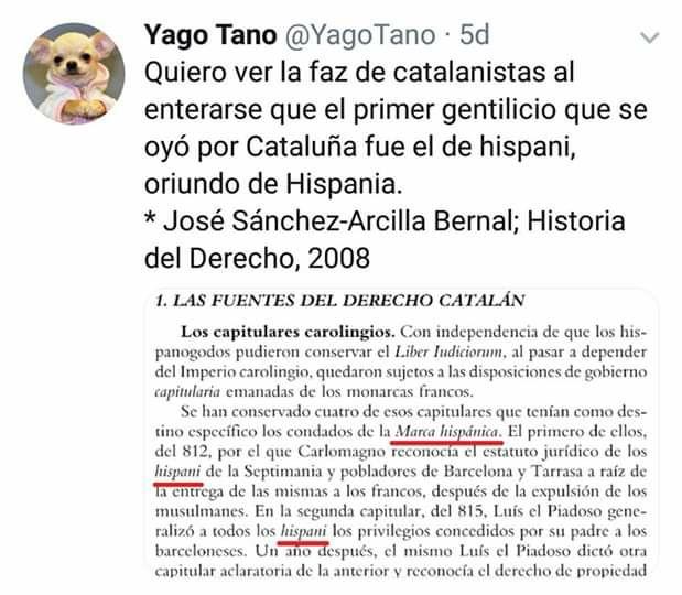 Yago Tano, Golden Jacob, quiero ver la faz de catalanistas al enterarse que el primer gentilicio que se oyó por Cataluña fue el de hispani, oriundo de Hispania. José Sánchez - Arcilla Bernal, historia del derecho