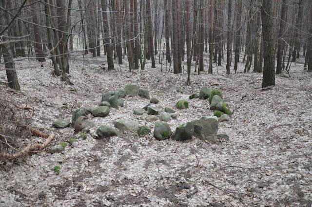 """Wczesnośredniowieczny kurhan typu """"orzeszkowo"""" w puszczy Zielonce"""