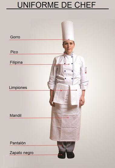 T cnicas b sicas de cocina for Tecnicas basicas de cocina libro