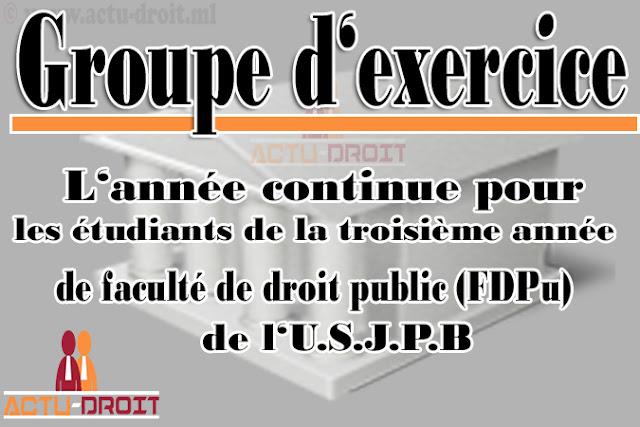 Groupe d'exercices des étudiants de la Faculté de Droit Public (F.D.Pu)