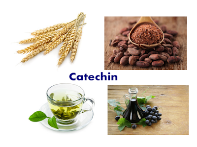 Food rich in Catechin