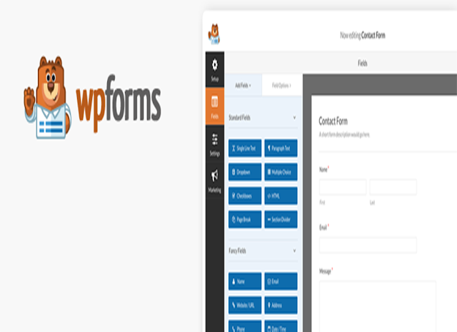 WPForms WP Plugin