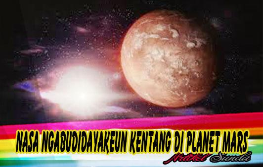Artikel Berita Sunda - Budidaya Kentang Di MARS!