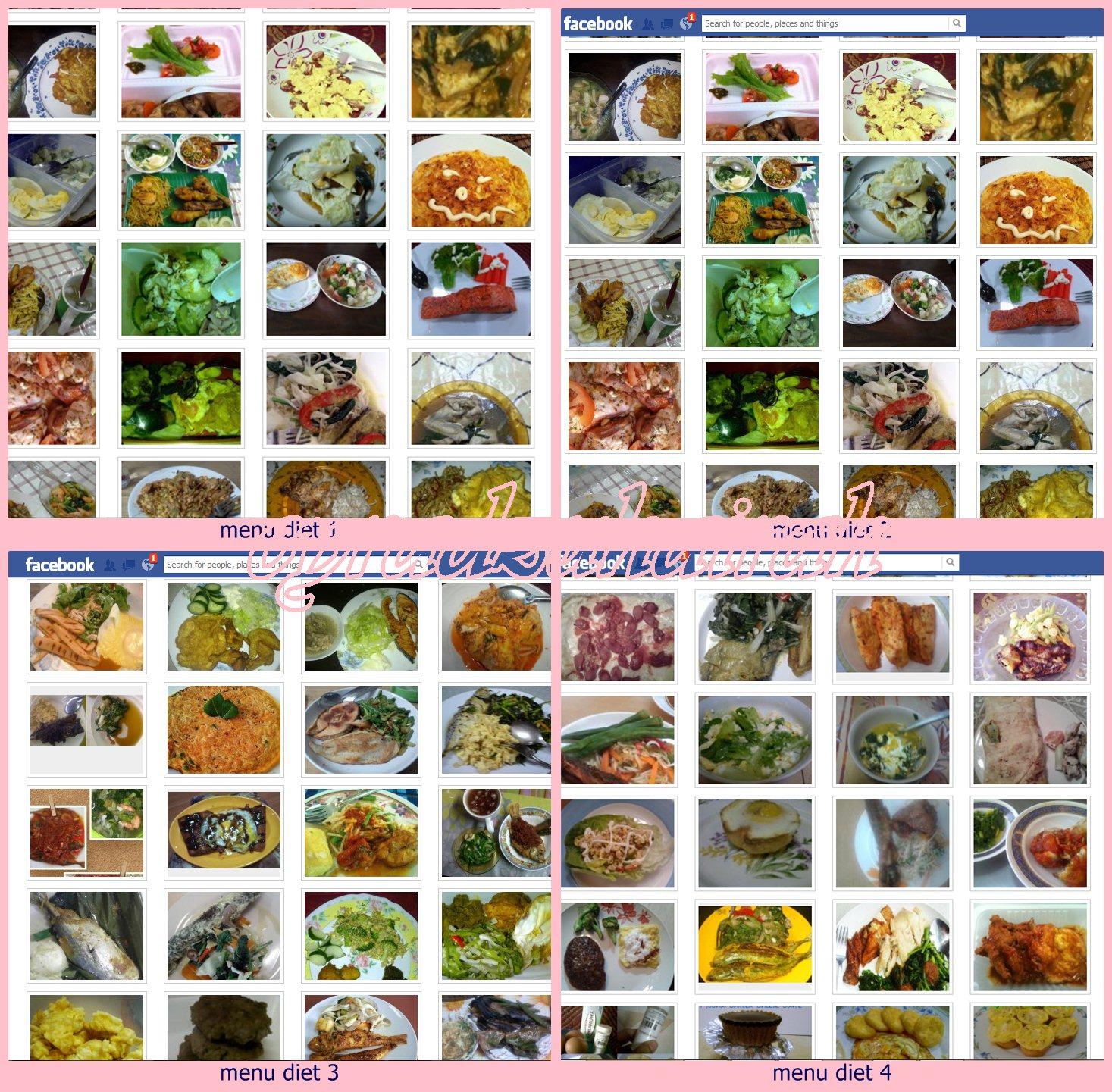Dan S Plan Simple Food Diet