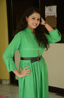 Geethanjali in Green Dress at Mixture Potlam Movie Pressmeet March 2017 075.JPG